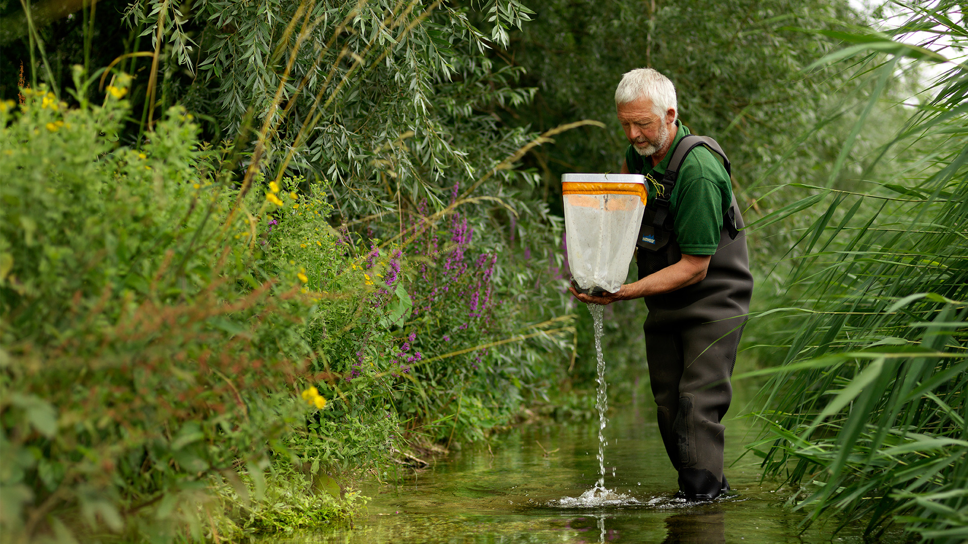 Vitacress and Salmon & Trout Conservation  Join Forces on Water Quality