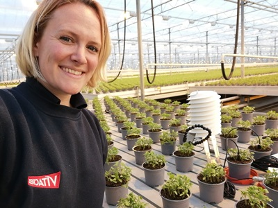 Vitacress Herbs Research and Developer lands place on new Fellowship Scheme