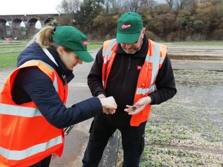 Vitacress to fund PhD on sustainable watercress production.