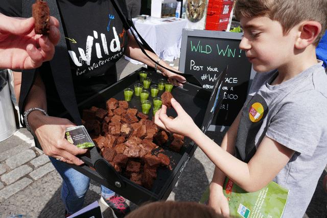 Vitacress go wild for the Watercress Festival